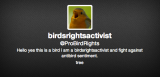 Twitter Tuesday: Birds' Rights Edition